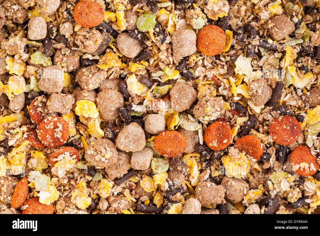 Dry mix dog food - Stock Image