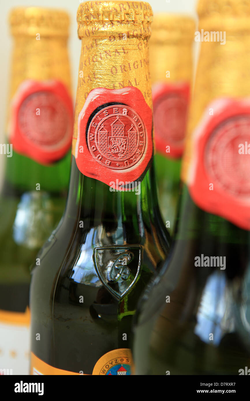 Bottles of Czech imported Budweiser lager - Stock Image