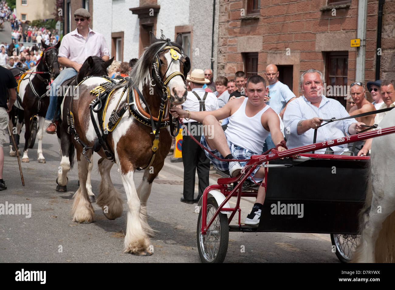 Horses and carts at Appleby Fair, an annual gathering of Gypsy and Traveller communities from UK and Ireland in Stock Photo