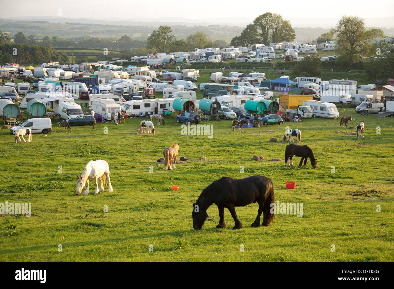 The camping grounds at the Appleby Fair, an annual summer gathering of Gypsy and Traveller communities in Cumbria, - Stock Image
