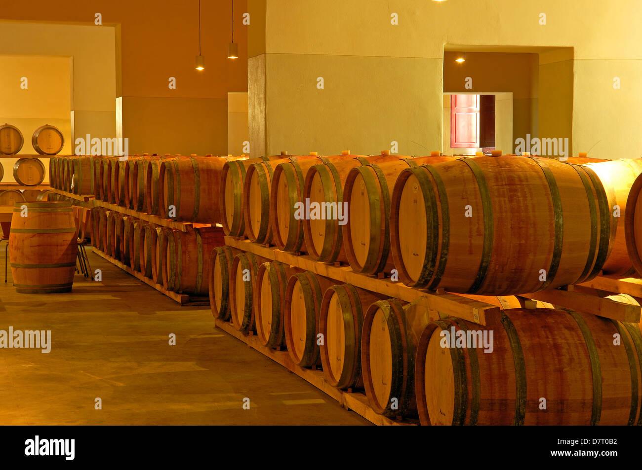 Chianti, Castello di Brolio cellar , Brolio Castle Cellar, Ricasoli Vineyard, Siena Province, Tuscany, Italy Stock Photo