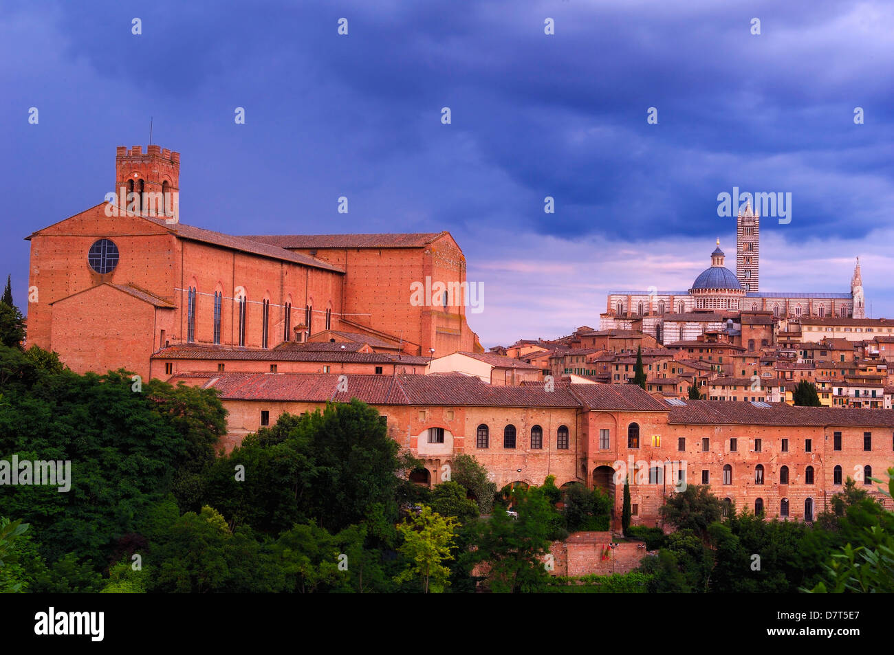 Siena, Duomo, Cathedral, Duomo Cathedral at Sunset, San Domenico Basilica, San Domenico Convent, UNESCO World Heritage Stock Photo