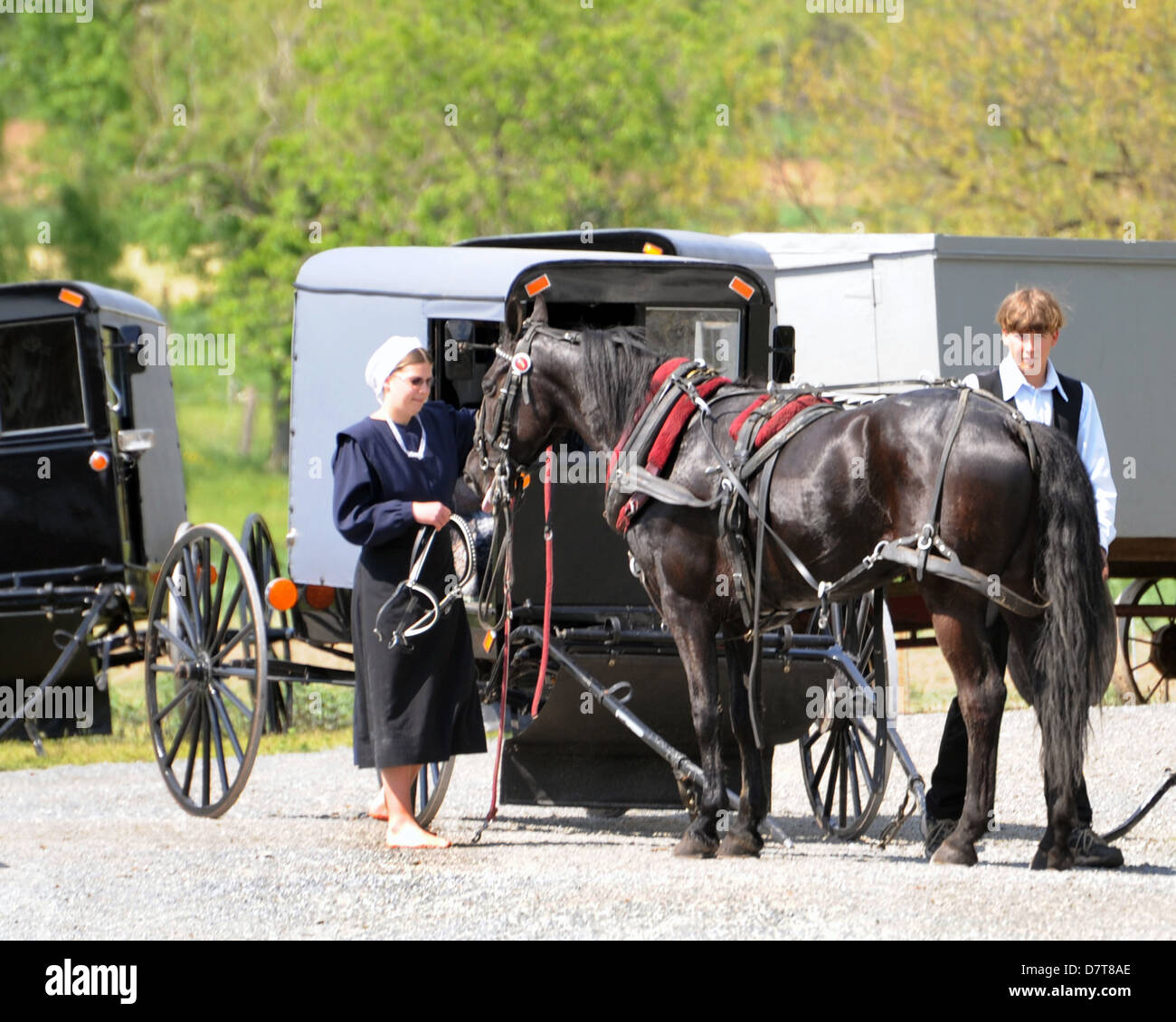Buggy and horse with Pennsylvania Dutch young people,girl and boy with horse and buggy Pennsylvania Dutch,horse Stock Photo