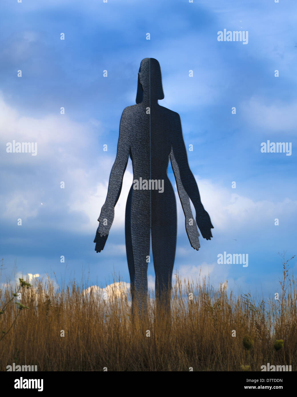 An Editorial image of a female silhouette  against a blue sky at Meijer Gardens and Sculpture Park in grand Rapids - Stock Image