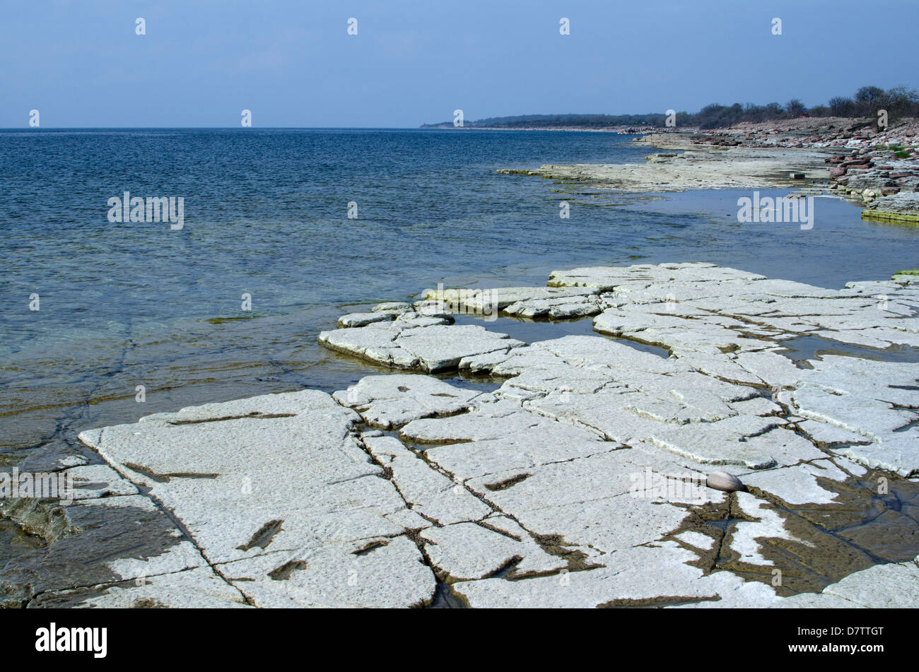 View over a flat rock coast at the swedish island Oland in the Baltic sea - Stock Image