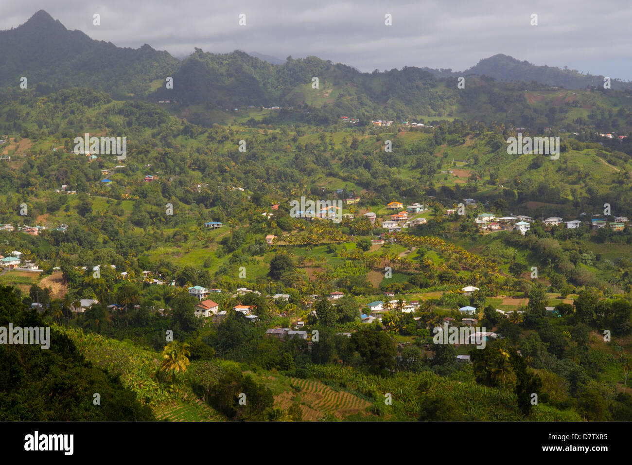 Mesopotamia Valley, near Kingstown, St. Vincent, St. Vincent and the Grenadines, Windward Islands, West Indies, - Stock Image