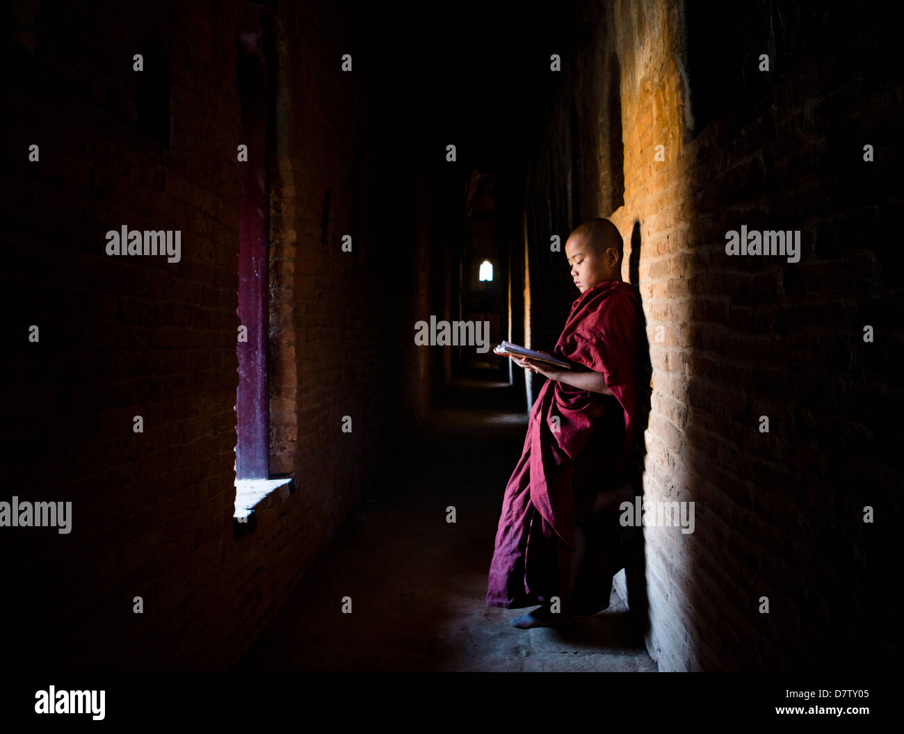 Novice Buddhist monk reading Buddhist scriptures in the light of a window in one of the many temples of Bagan, Burma - Stock Image