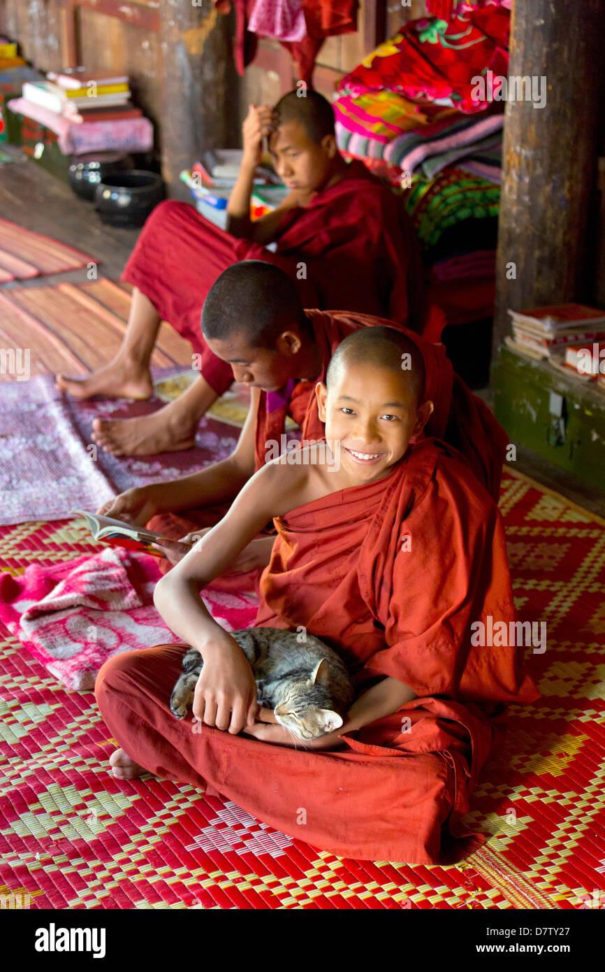 Buddhist monk playing with a cat at Shwe Yaunghwe Kyaung, a famous teak monastery, Nyaungshwe, Inle Lake, Shan State, - Stock Image