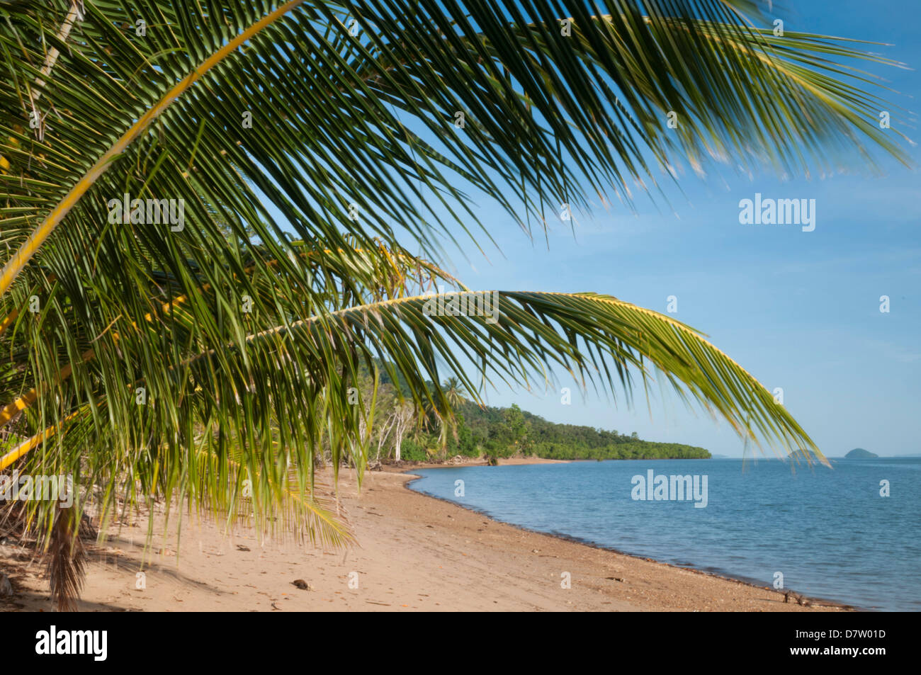 Dunk Island beach with islands offshore, palm leaves, Great Barrier Reef, UNESCO World Heritage  Site, Queensland, - Stock Image
