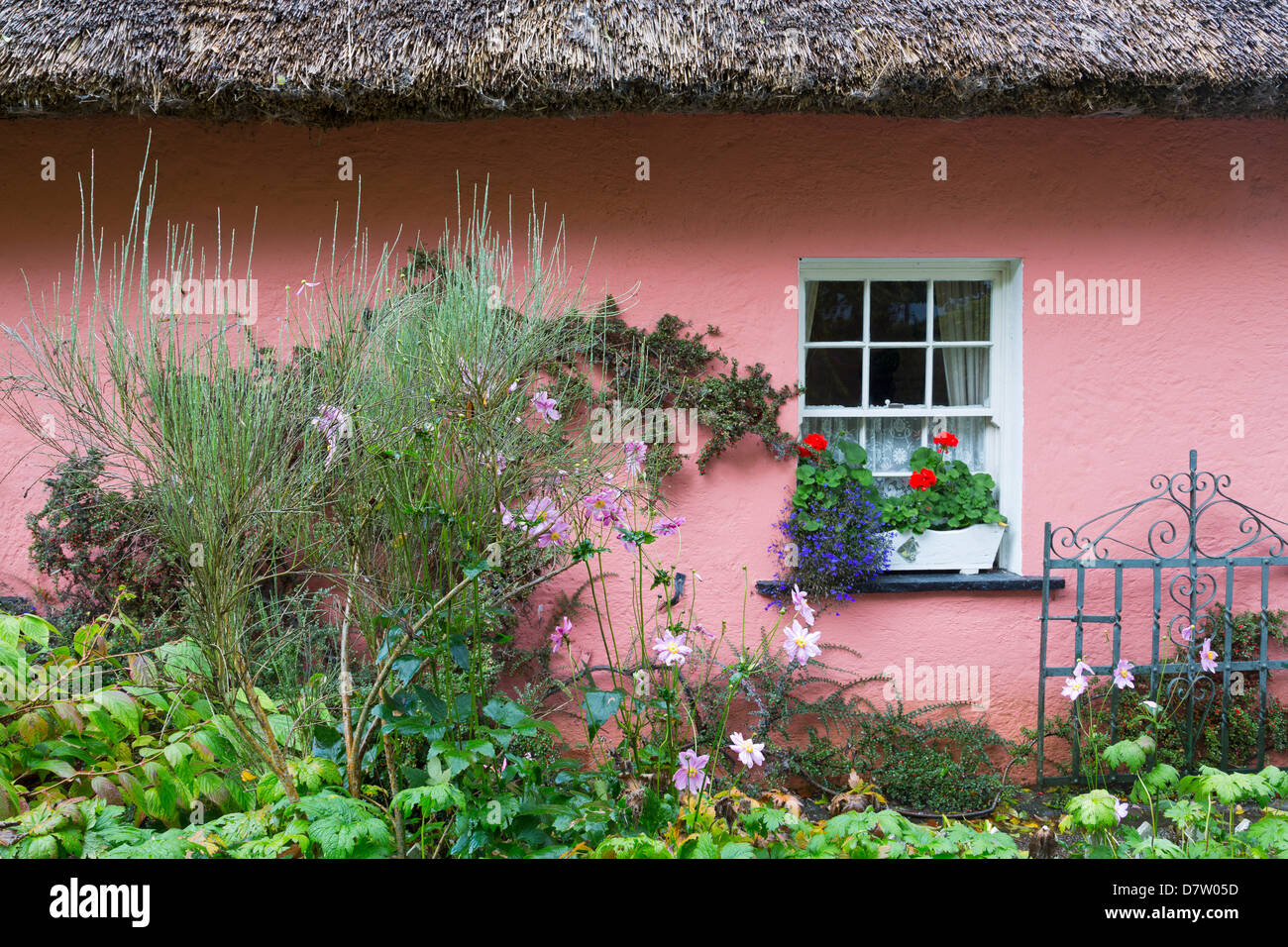 Golden Vale Farmhouse in Bunratty Castle and Folk Park, County Clare, Munster, Republic of Ireland - Stock Image