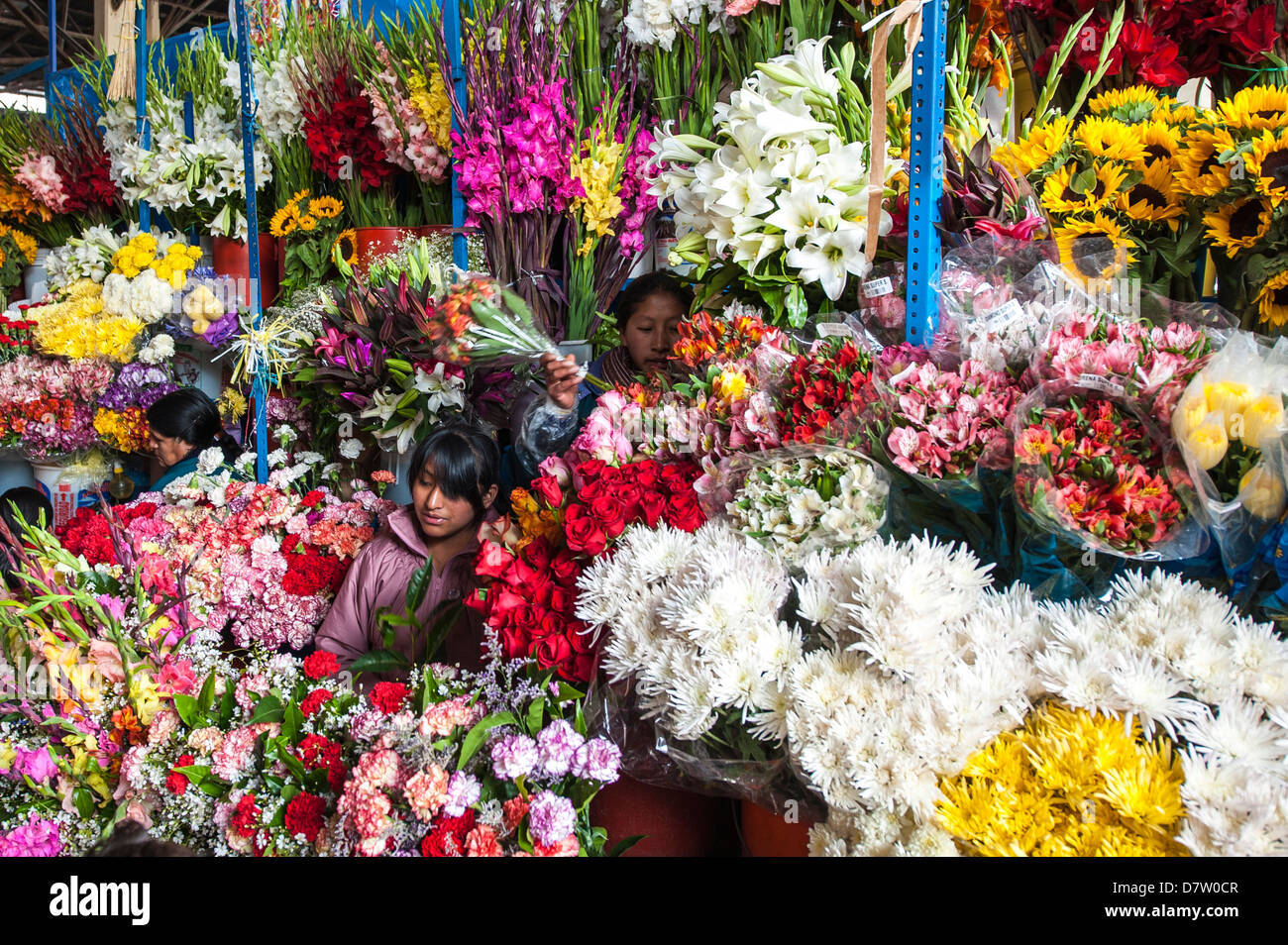 Flowers in local market Cuzco, Peru, South America - Stock Image