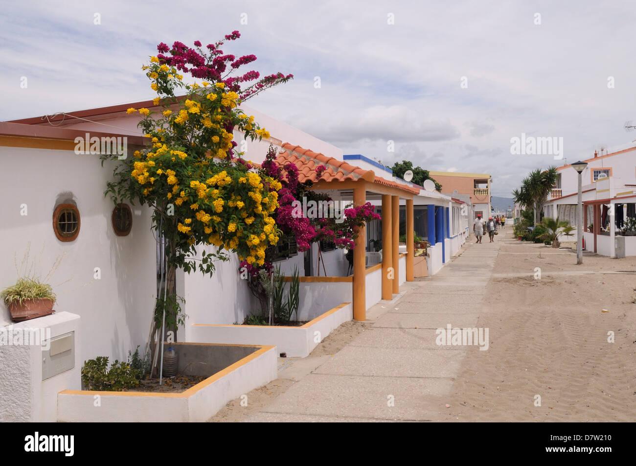 Main street of fishermen's village on Culatra island, Parque Natural da Ria Formosa, near Olhao, Algarve, Portugal - Stock Image