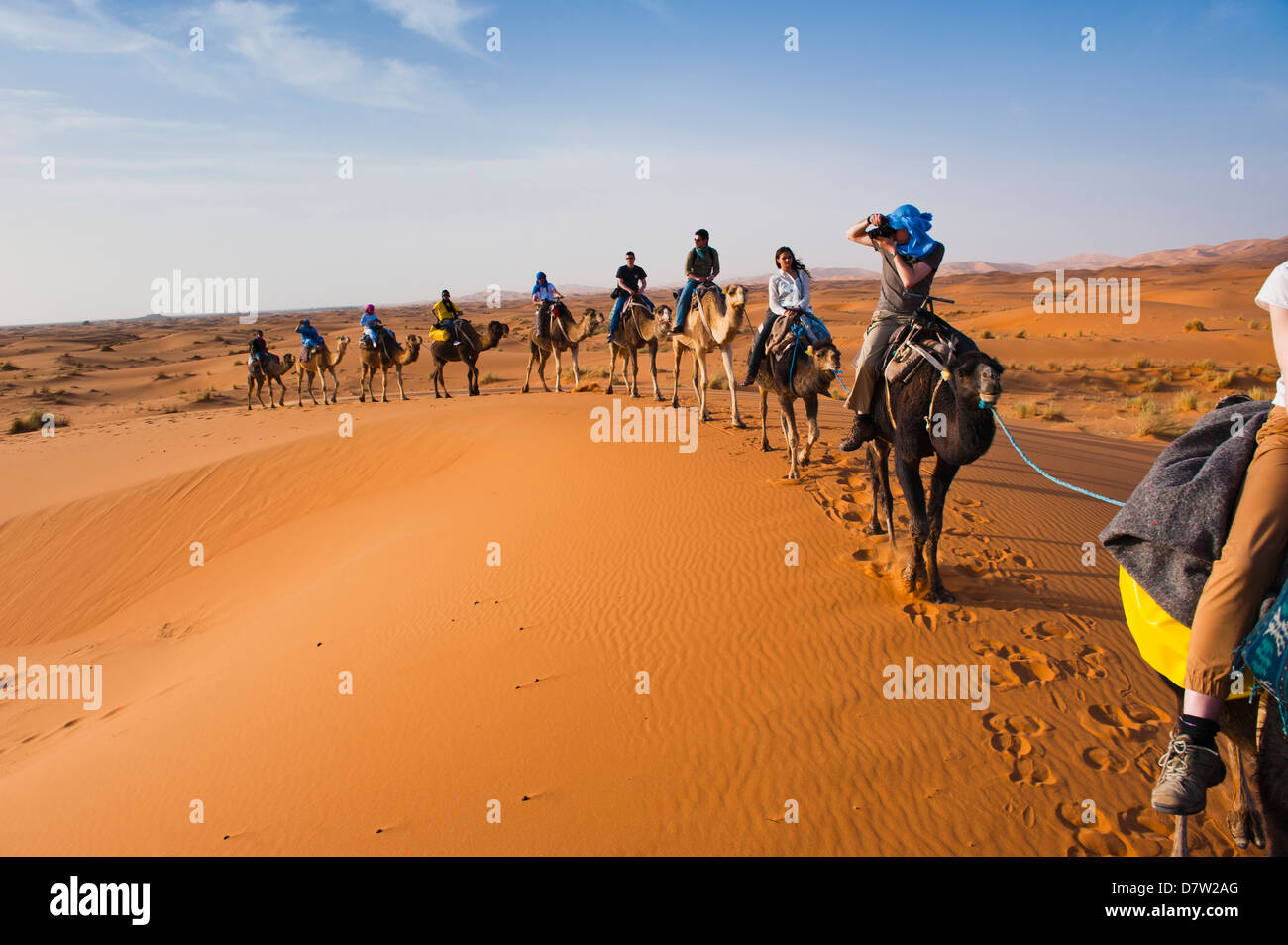 Tourists on a camel ride in Erg Chebbi Desert, Sahara Desert near Merzouga, Morocco, North Africa Stock Photo