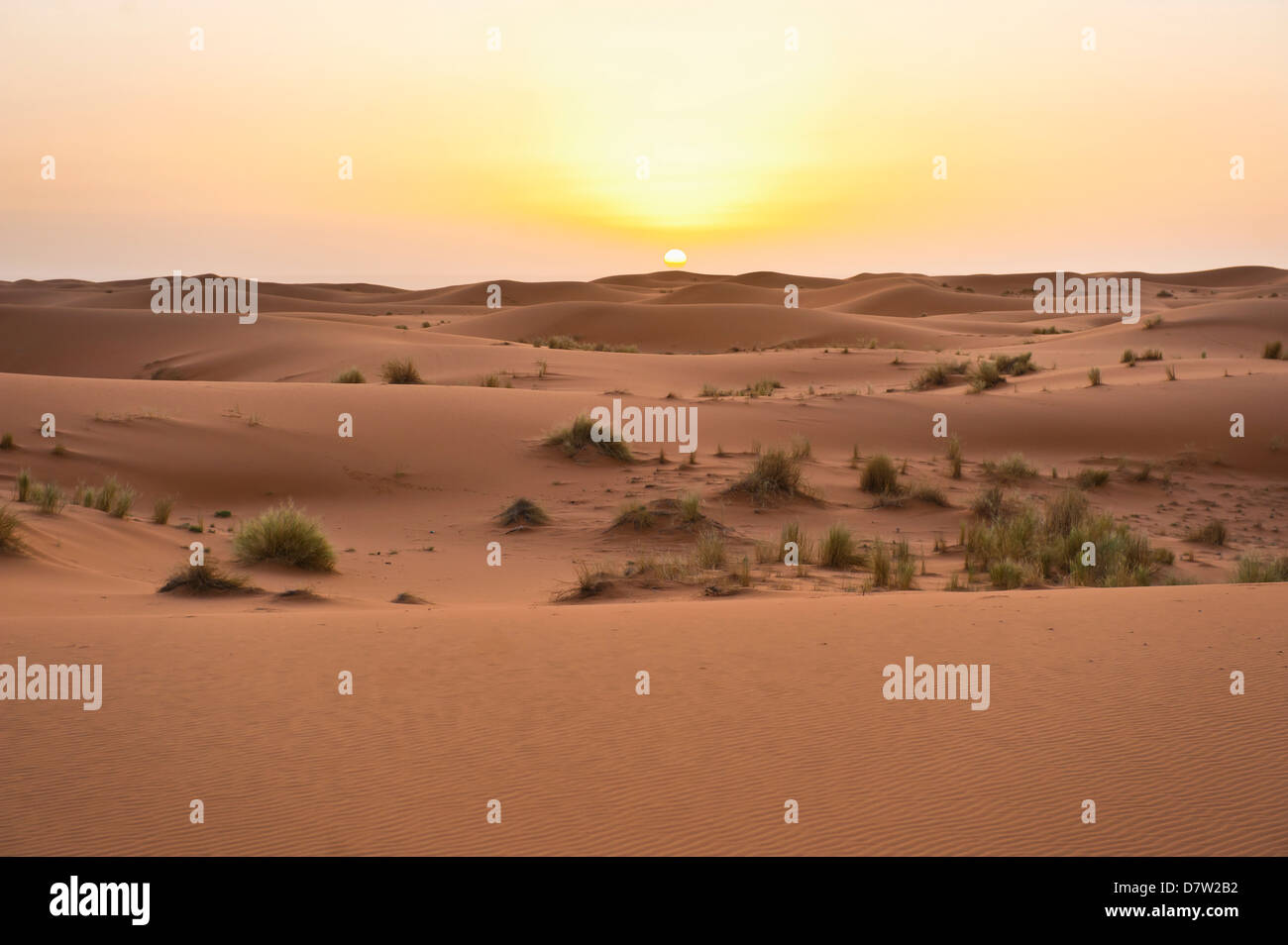 Erg Chebbi dunes at sunrise, Sahara Desert near Merzouga, Morocco, North Africa - Stock Image
