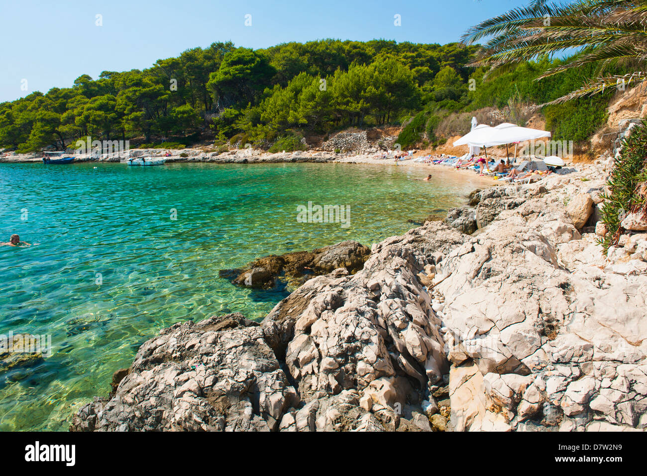 Beach in the Pakleni Islands (Paklinski Islands), Dalmatian Coast, Adriatic Sea, Croatia - Stock Image