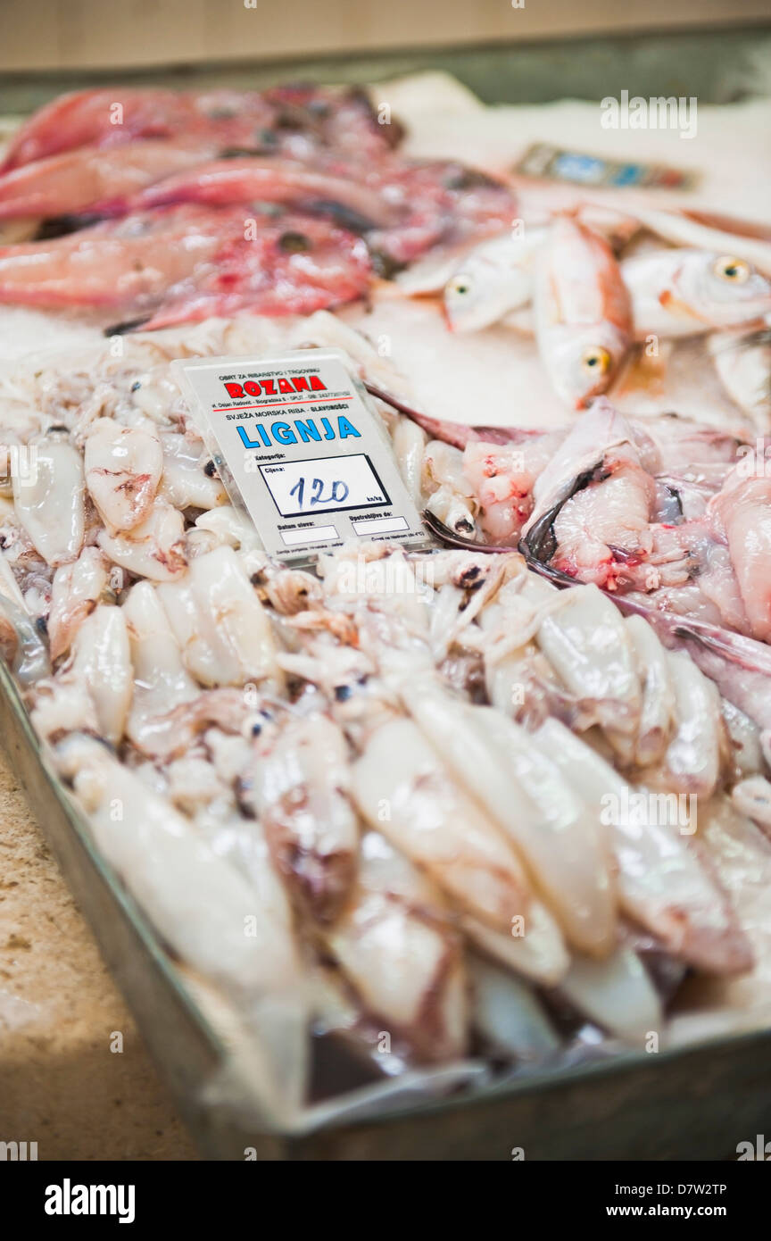 Fresh calamari (squid) in Split fish market, Split, Dalmatia, Croatia Stock Photo