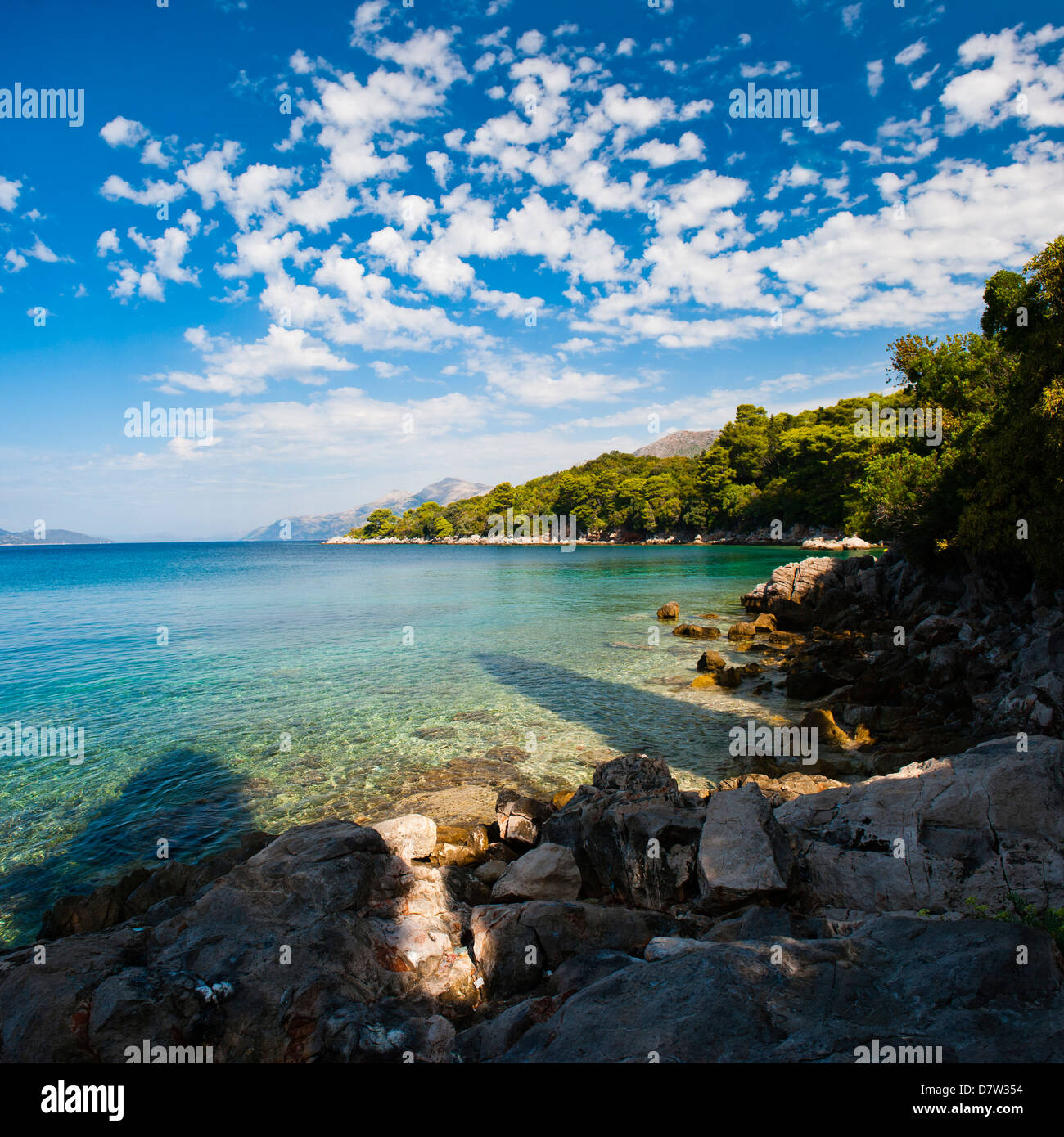 Kolocep Island (Kalamota), Elaphiti Islands (Elaphites), Dalmatian Coast, Adriatic Sea, Croatia - Stock Image