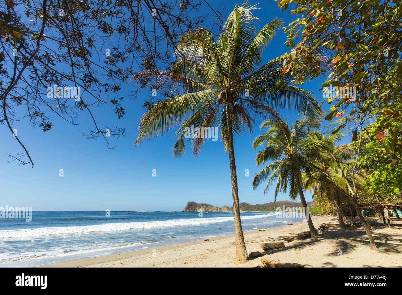 The white sand palm-fringed beach at laid-back village and resort, Samara, Nicoya Peninsula, Guanacaste Province, - Stock Image