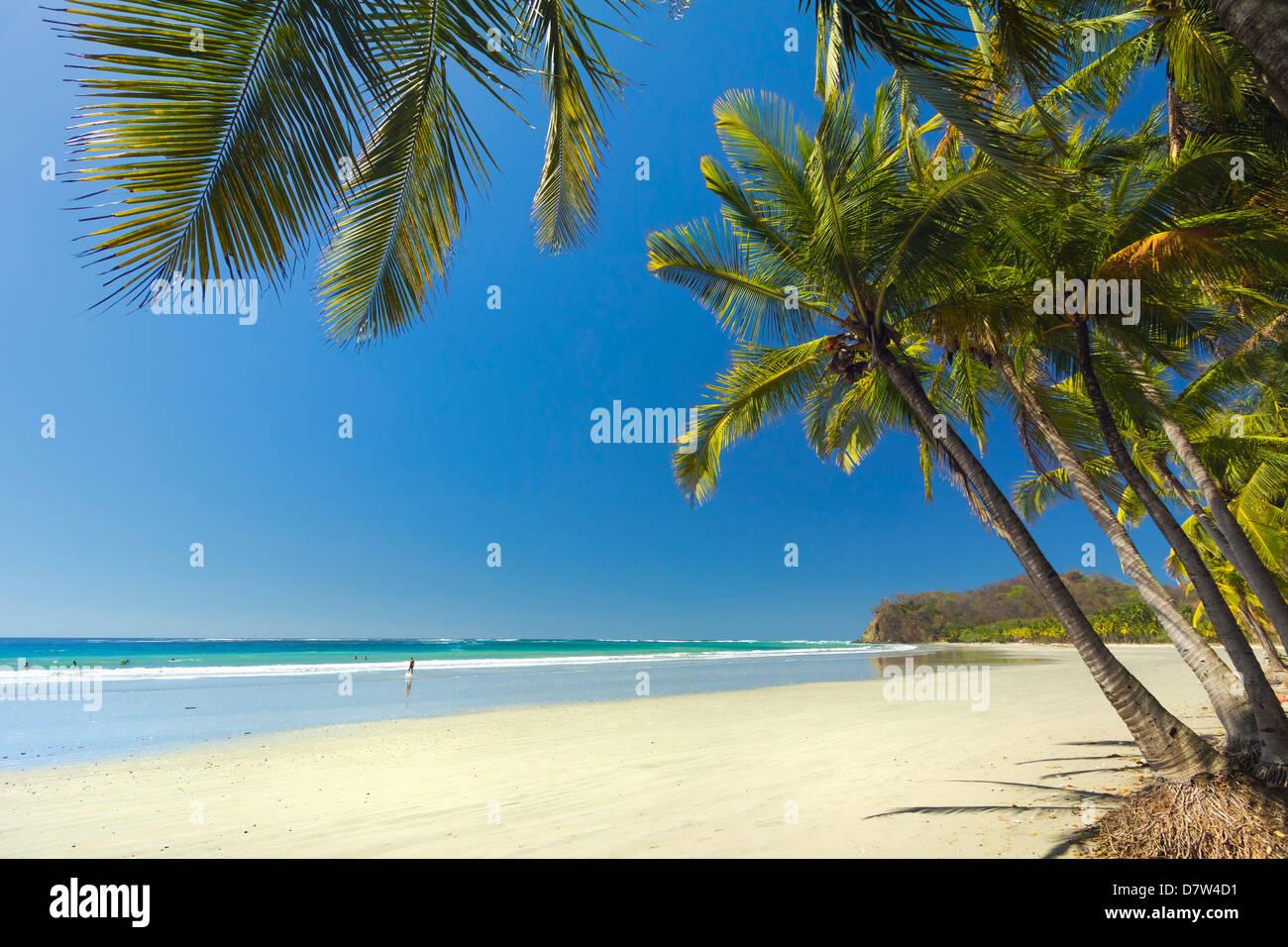 The white sand palm-fringed beach at this laid-back village & resort; Samara, Guanacaste Province, Nicoya Peninsula, - Stock Image