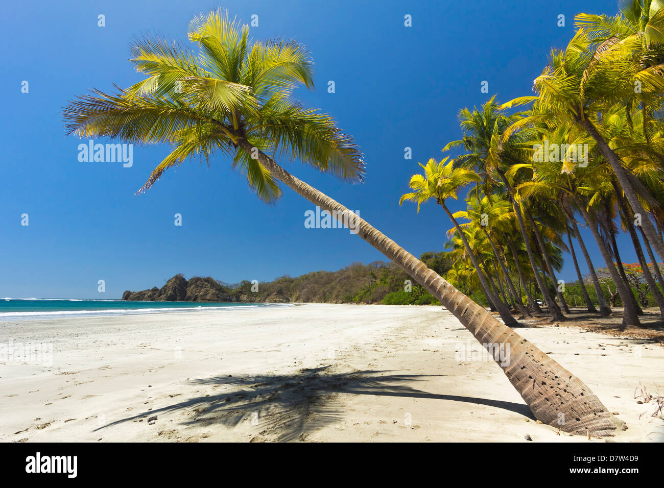 Beautiful palm fringed, white sand Playa Carrillo, Carrillo, nr Samara, Guanacaste Province, Nicoya Peninsula, Costa - Stock Image
