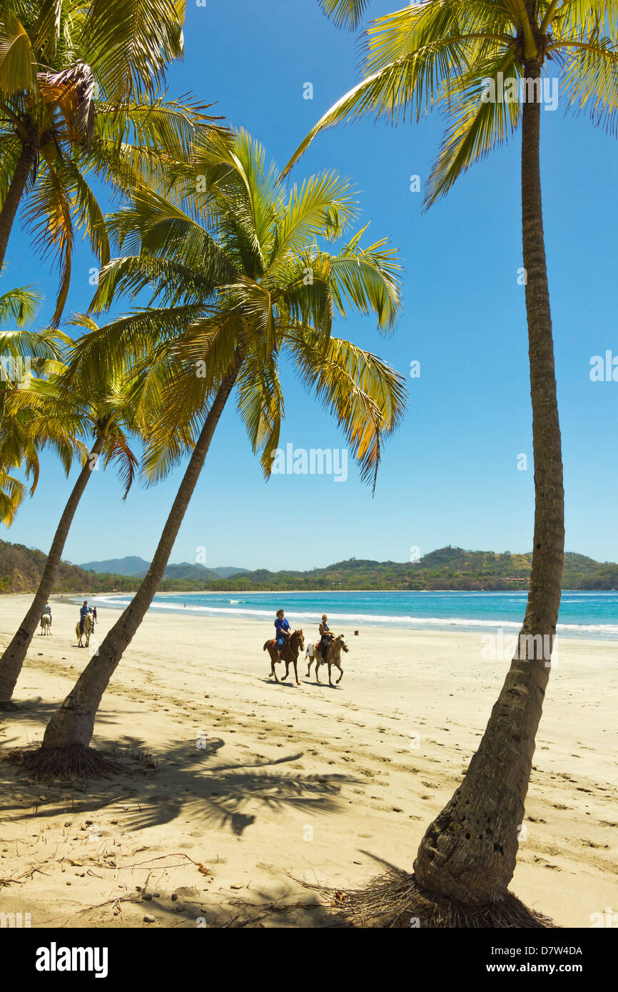 Horse riders on beautiful palm fringed Playa Carrillo, Carrillo, near Samara, Guanacaste Province, Nicoya Peninsula, - Stock Image
