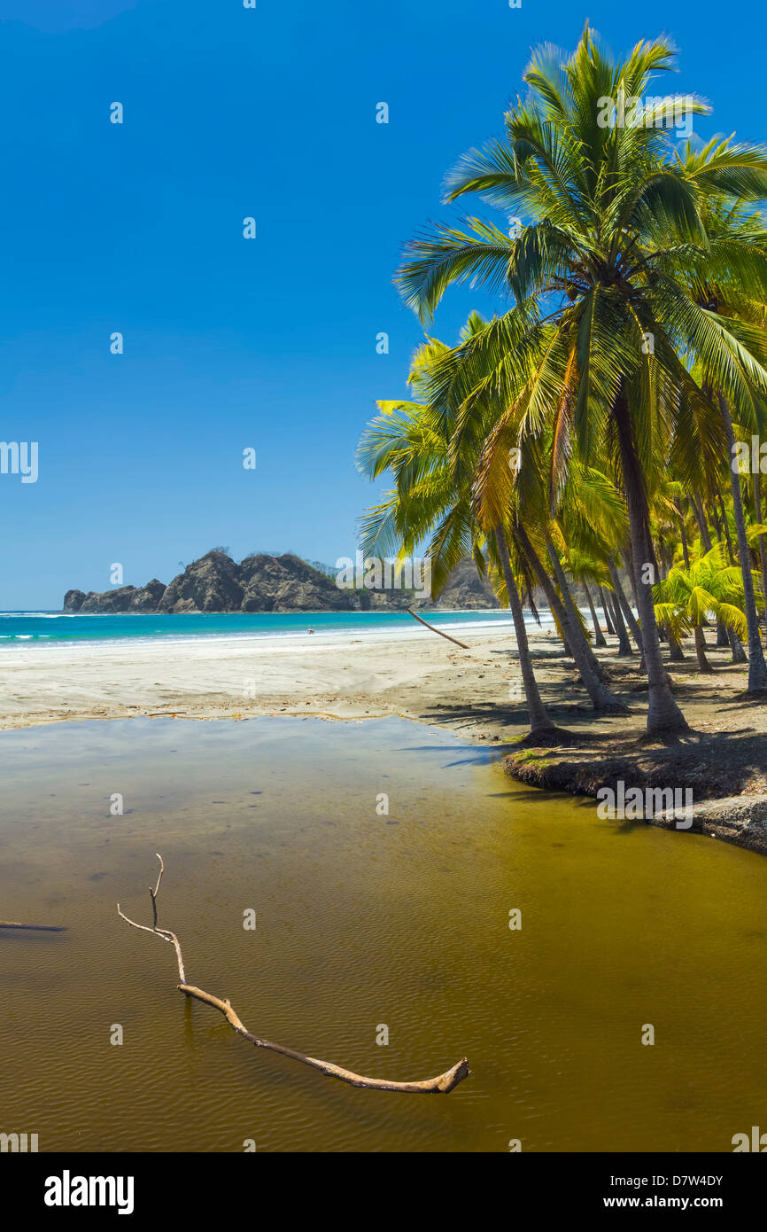 Dry season river mouth at palm fringed Playa Carrillo, Carrillo, near Samara, Guanacaste Province, Nicoya Peninsula, - Stock Image