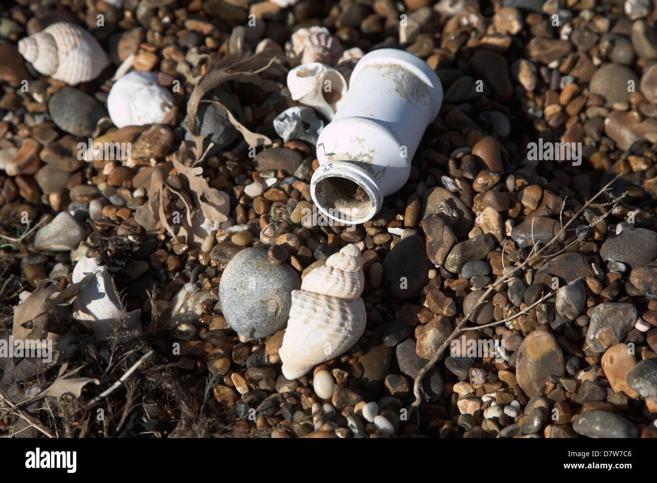 Marine pollution shown by plastic container on a beach next to shells - Stock Image