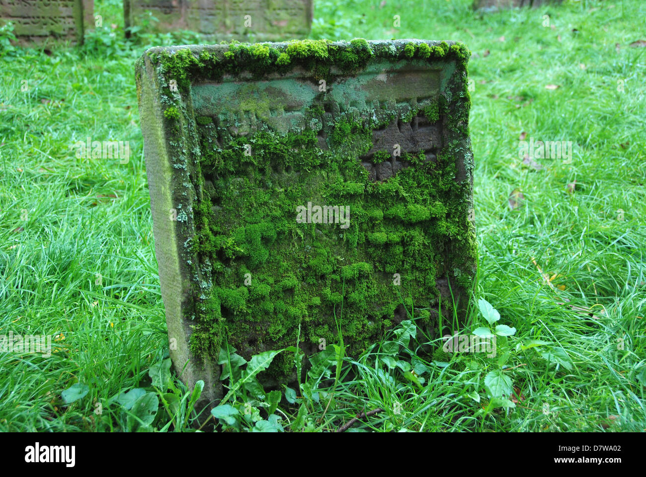 Mossy Jewish grave with Hebrew script - Stock Image
