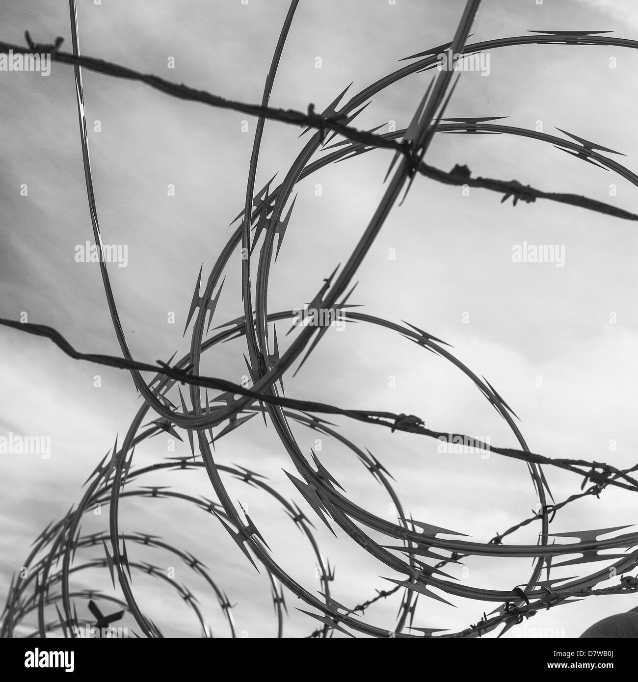 Razor Wire Black and White Stock Photos & Images - Alamy