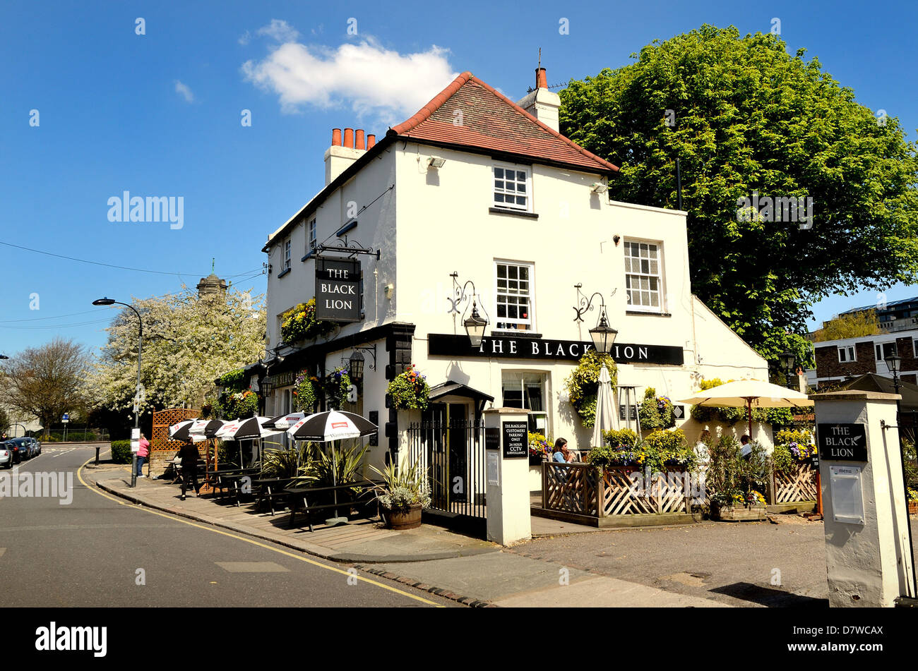 The Black Lion pub in Hammersmith West London - Stock Image