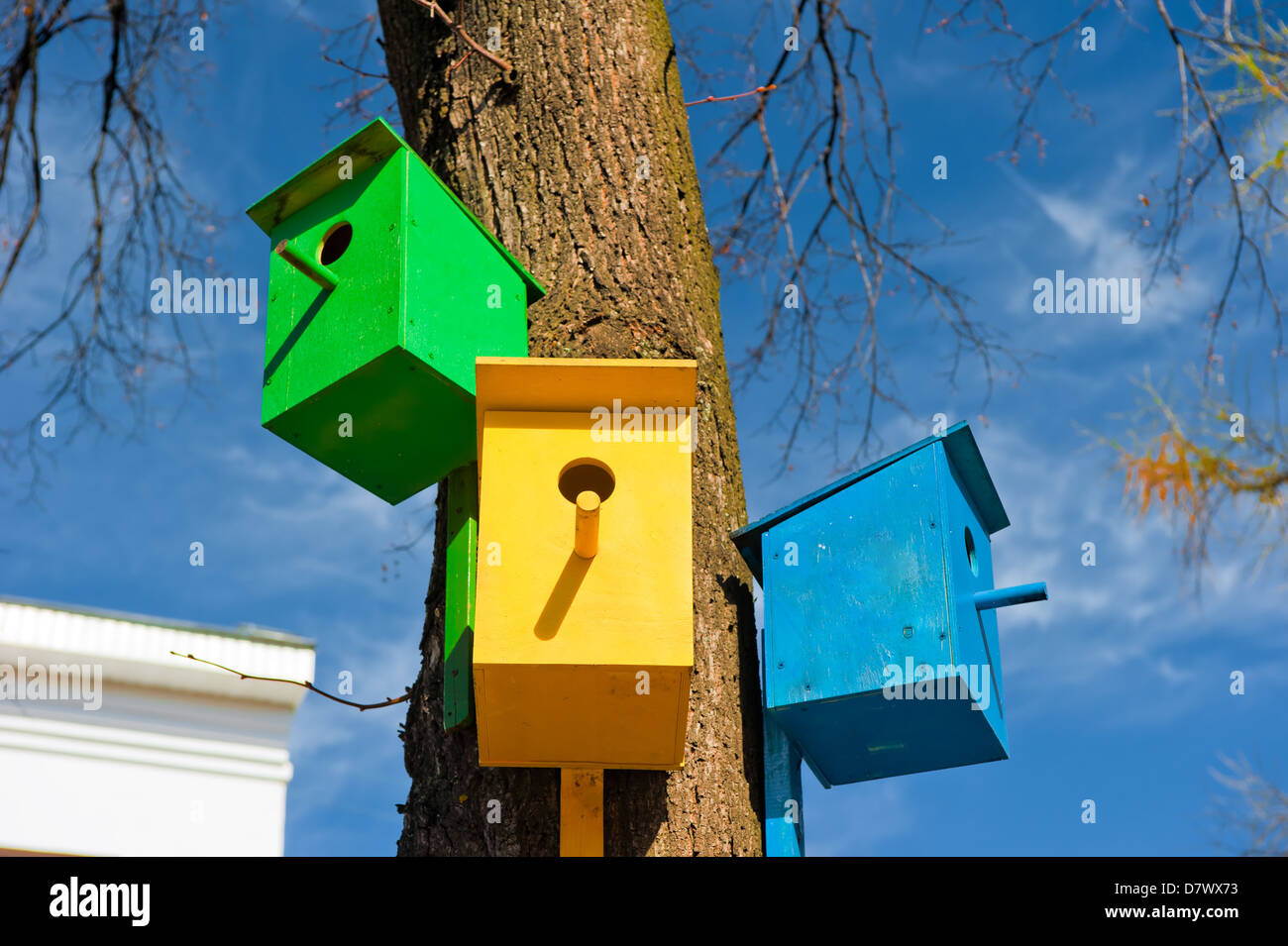 Three colorful birdhouse attached to a tree against the sky - Stock Image