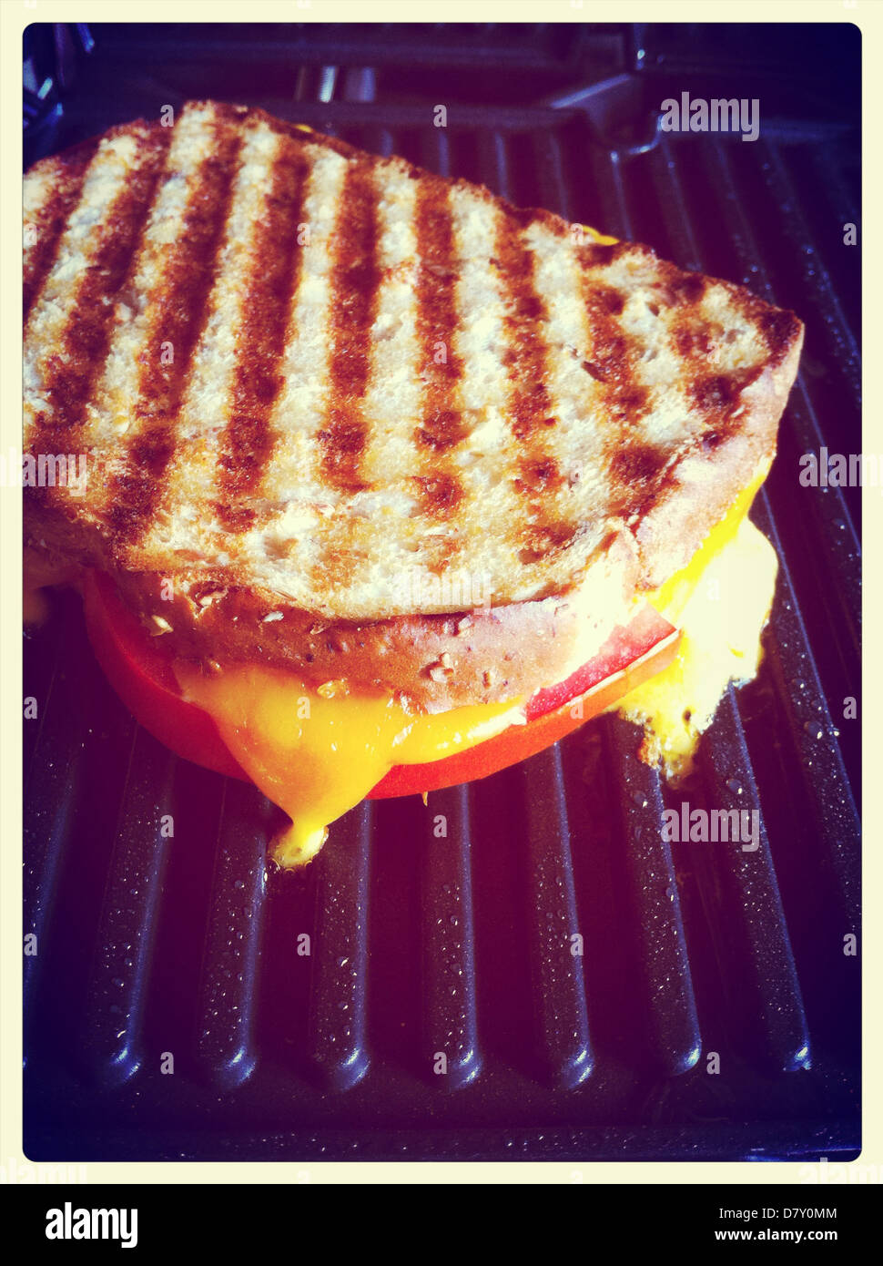 Sandwich Maker High Resolution Stock Photography And Images Alamy