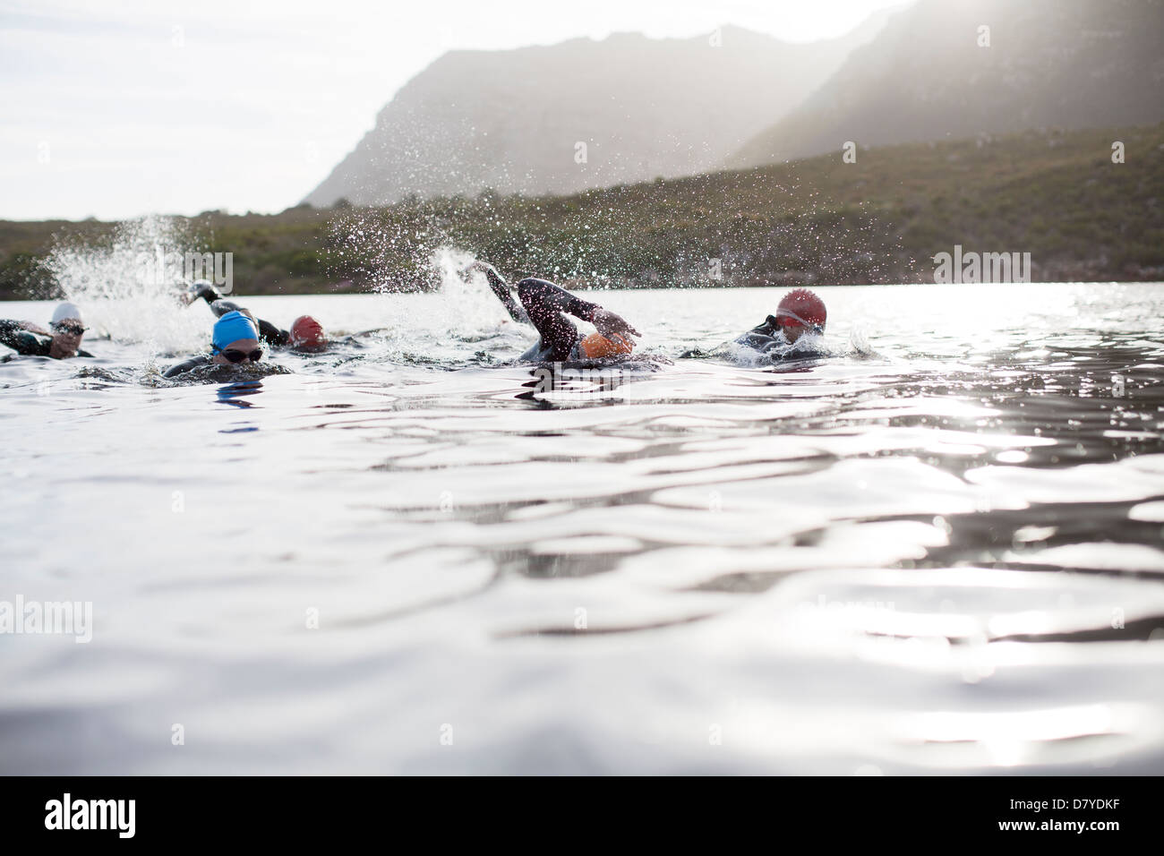 Triathletes swimming - Stock Image