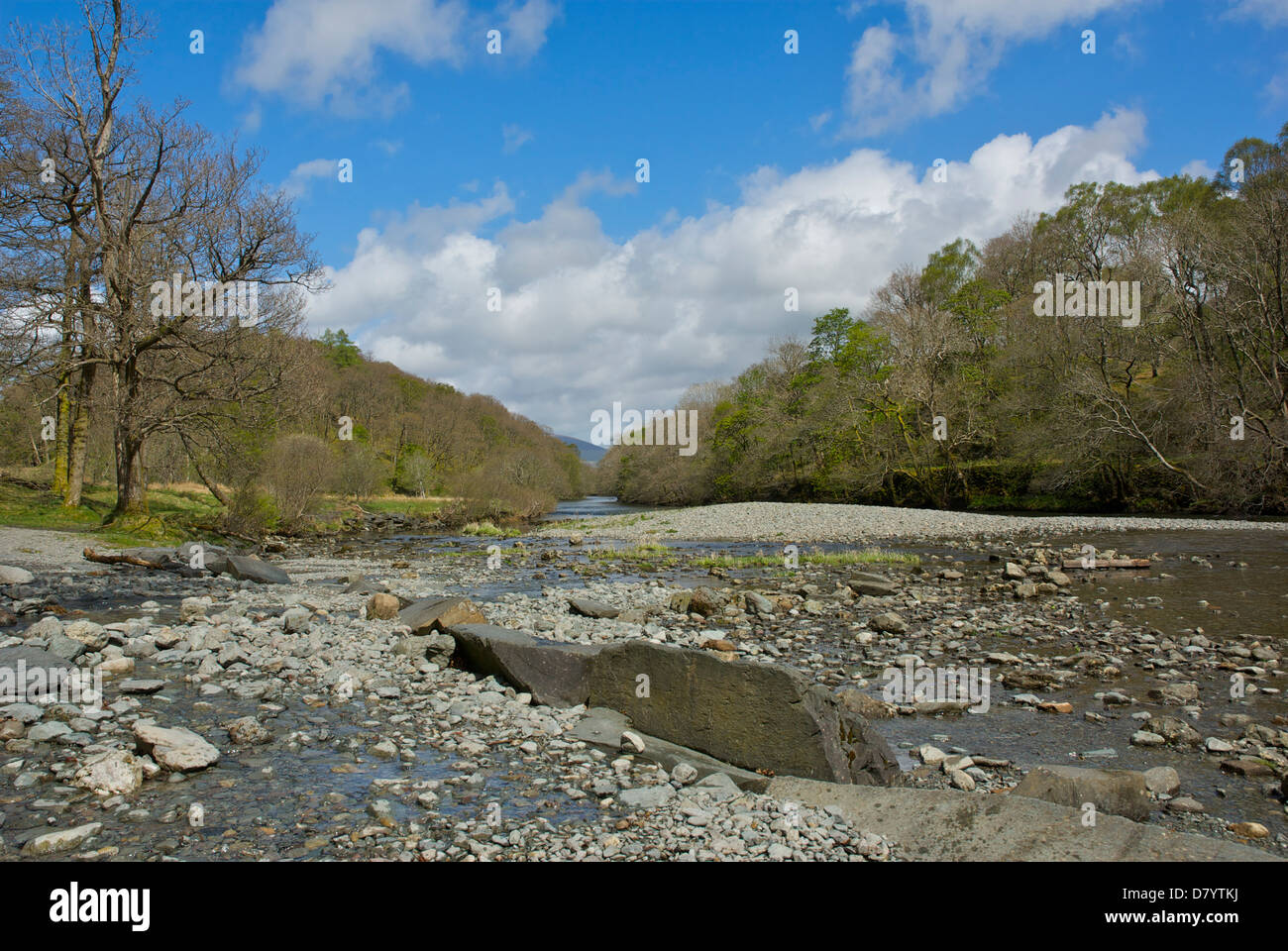 The River Derwent, in Borrowdale, Lake District National Park, Cumbria, England UK - Stock Image