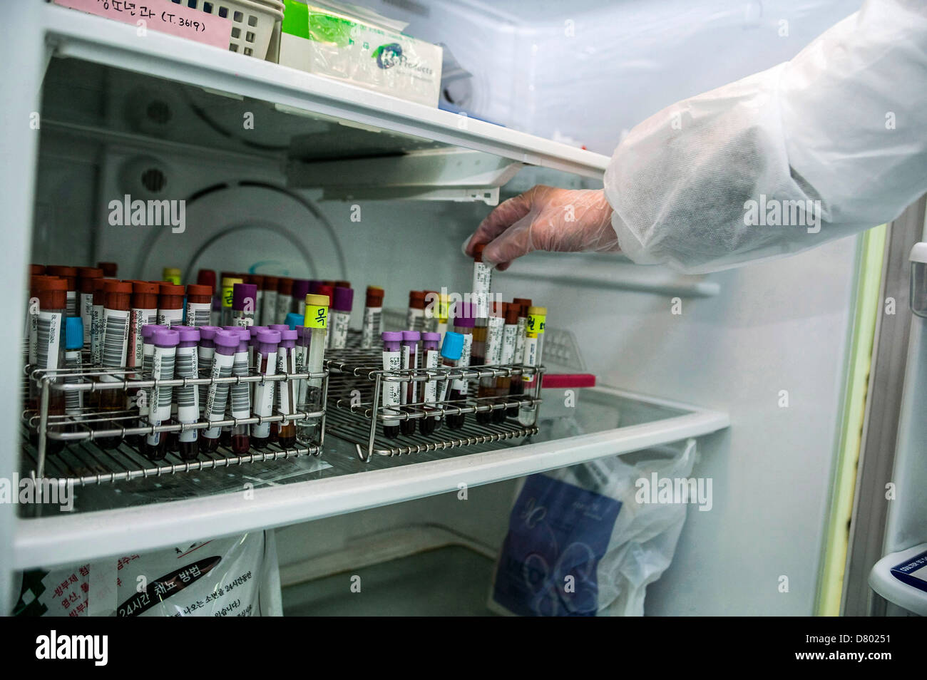 Blood samples are stored in a hospital refrigerator, during the procedure of investigation. - Stock Image
