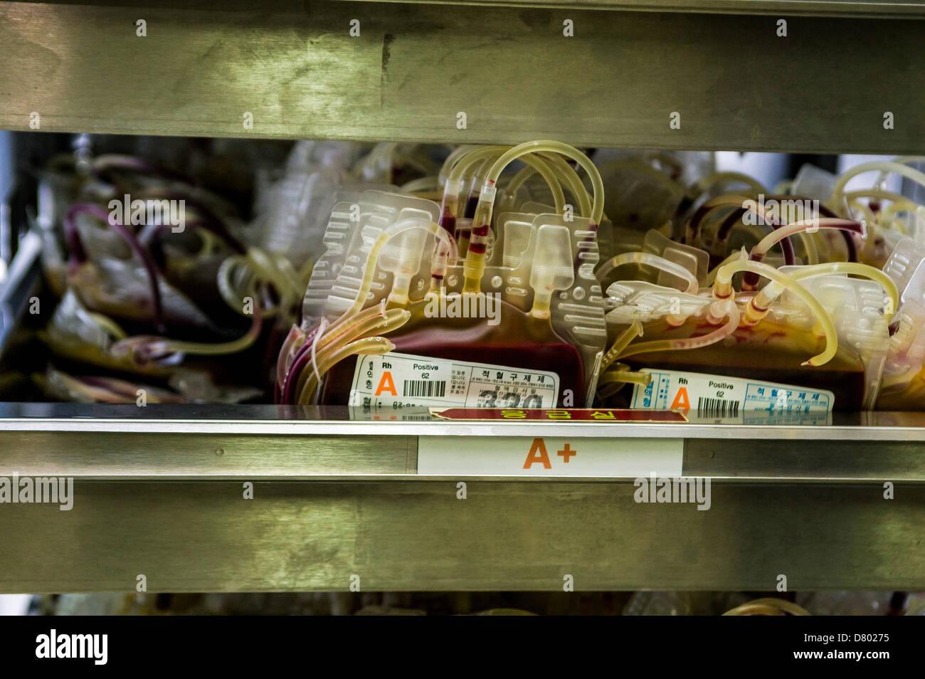 A+ Blood bag bank storage - Stock Image
