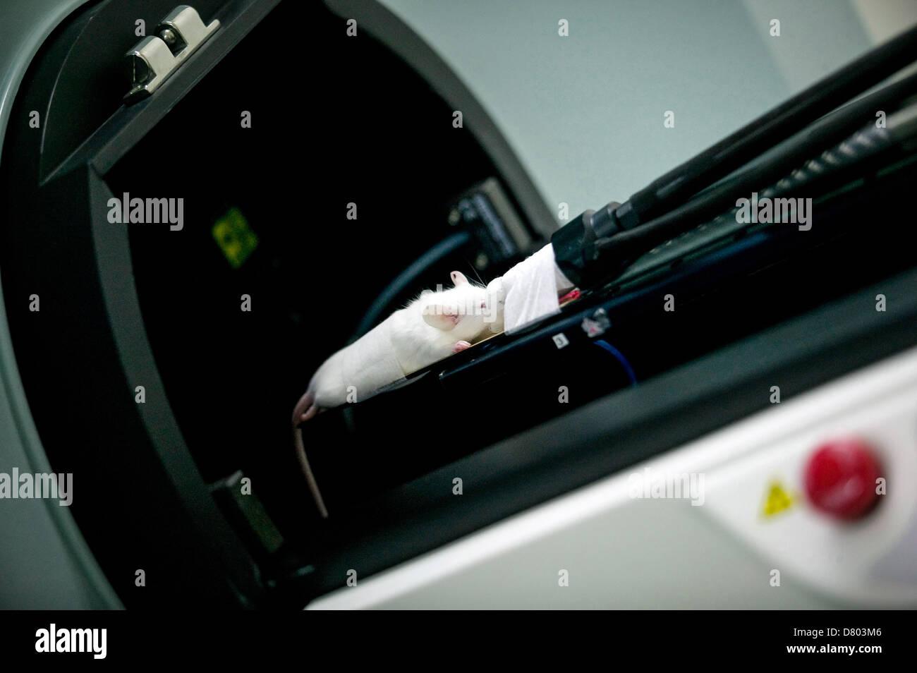 CT Imaging room machine - Stock Image