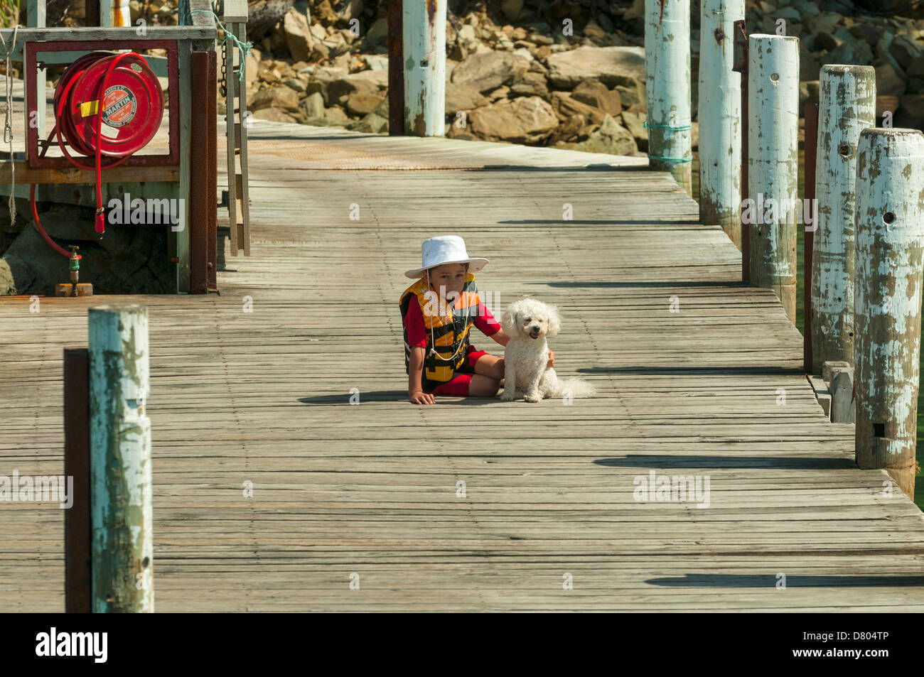 A Boy and His Dog at Resolution Bay, Queen Charlotte Sound, Marlborough , New Zealand - Stock Image
