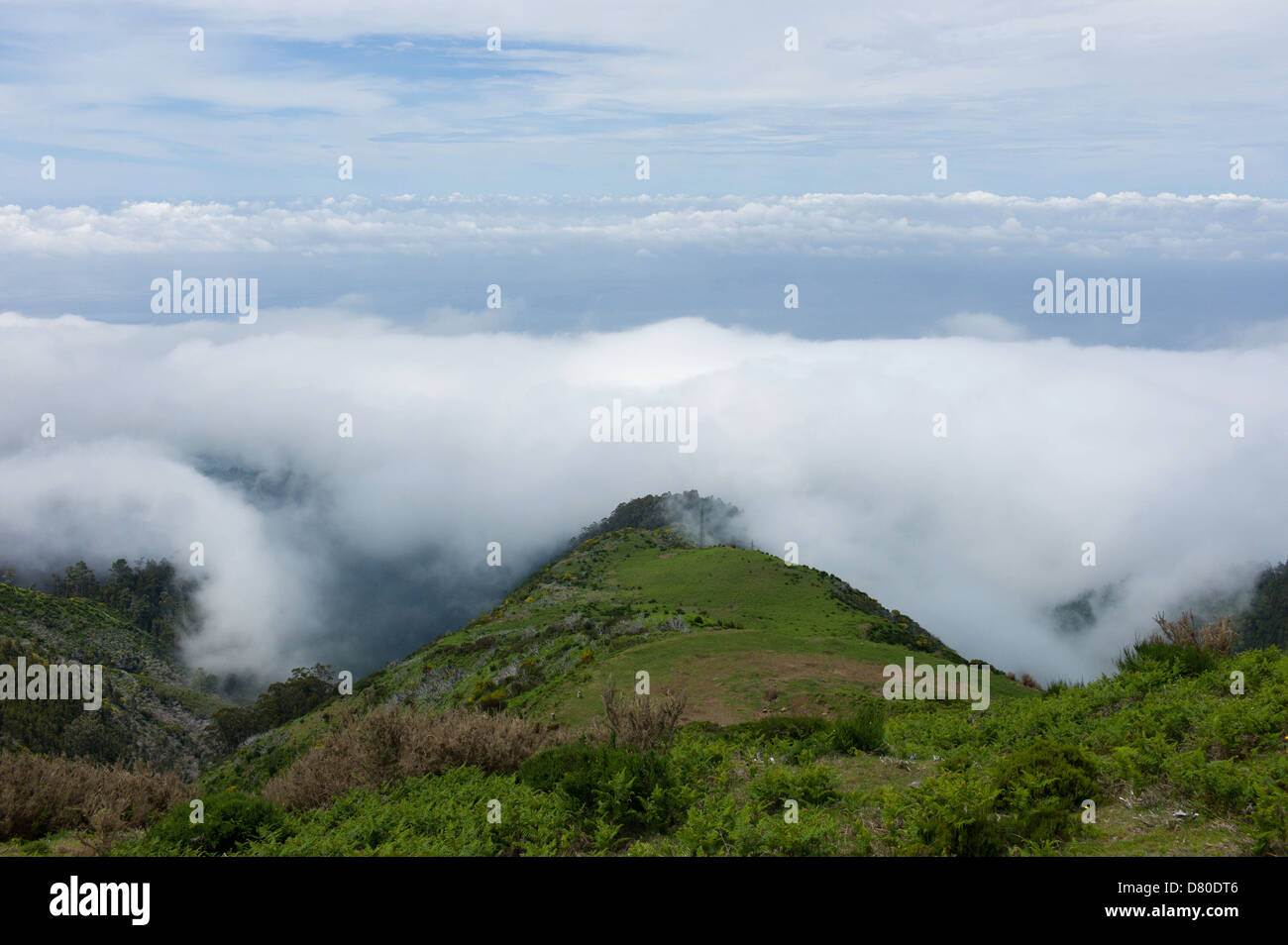 View looking downa from the central plateau of Madeira - Stock Image