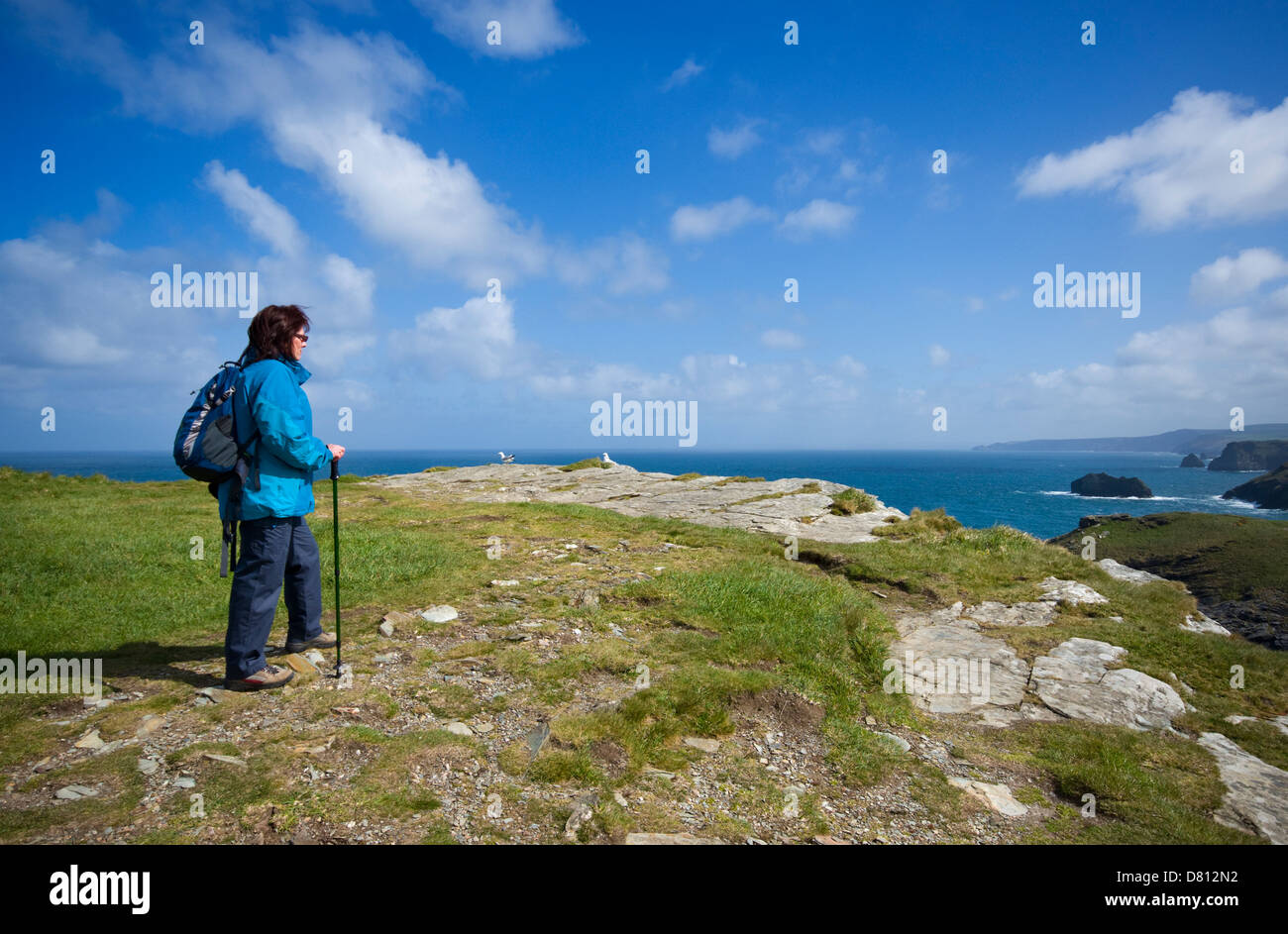 A female hiker taking in the view of the coastline at Tintagel in north Cornwall, England, UK - Stock Image
