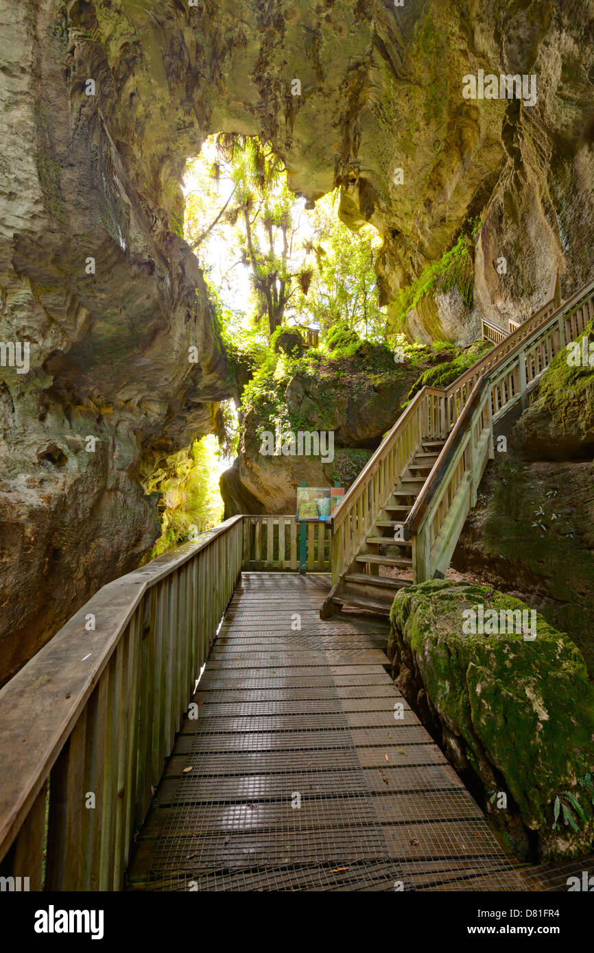 Mangapohue Natural Bridge, Waikato, New Zealand. The bridge is the remaining part of the roof of a cave system... - Stock Image