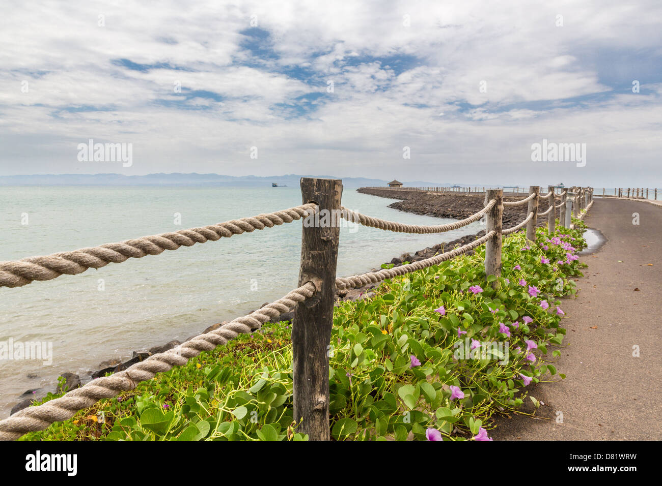 Plants and flowers growing on the shores of the Red sea near Djibouti port - Stock Image