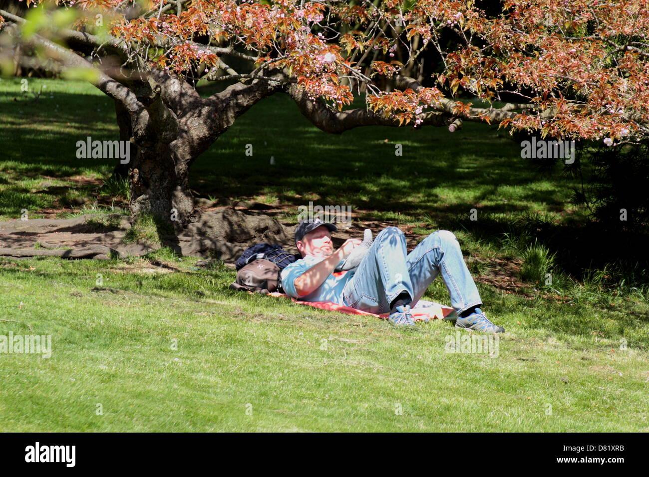Sunbather in Glasgow, Botanic Gardens, Scotland, UK May 2013 - Stock Image