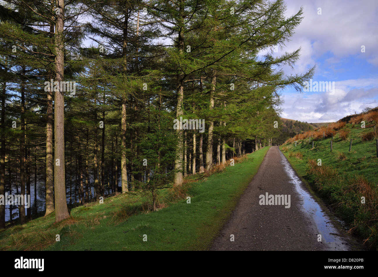 Cycle path around the reservoirs of the Upper Derwent Valley, Derbyshire, UK - Stock Image