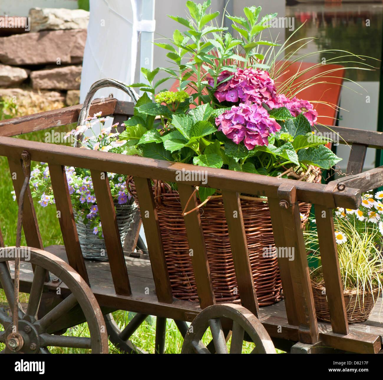 Wheel, Spoke, Summer, Plant, Basket, Multi Colored, Flower Pot - Stock Image