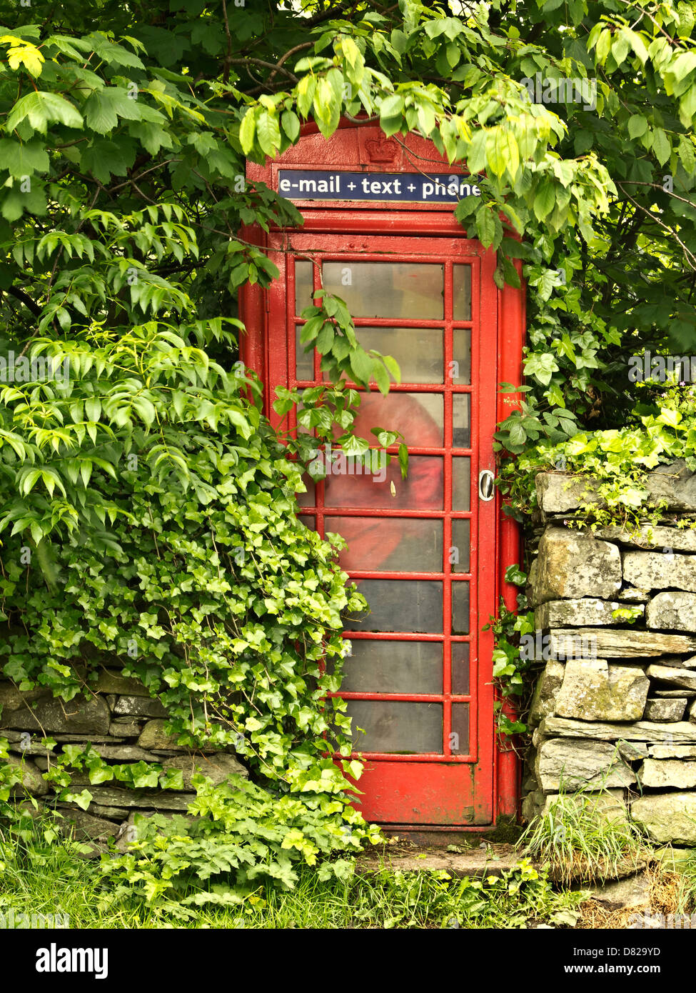 A man making a call within a red telephone box , Stonewaite, Lake District, UK - Stock Image