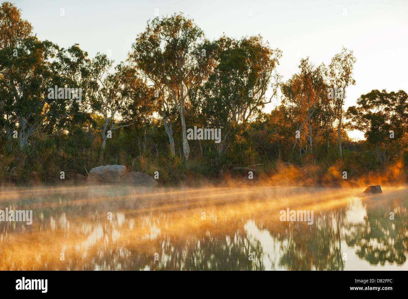 First morning sun beams on Manning River. - Stock Image