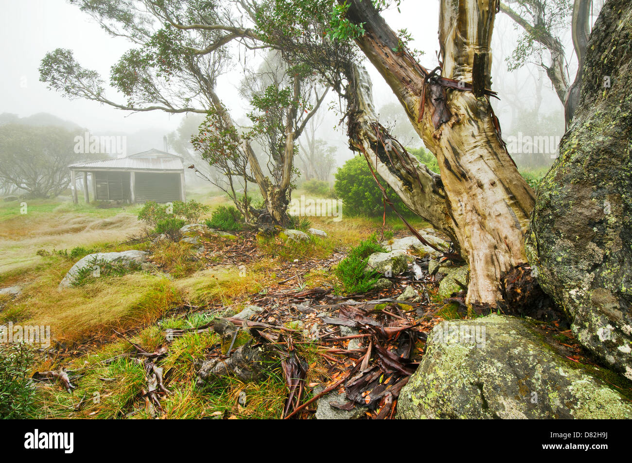 Pretty Valley Hut in the High Country of Victoria. - Stock Image