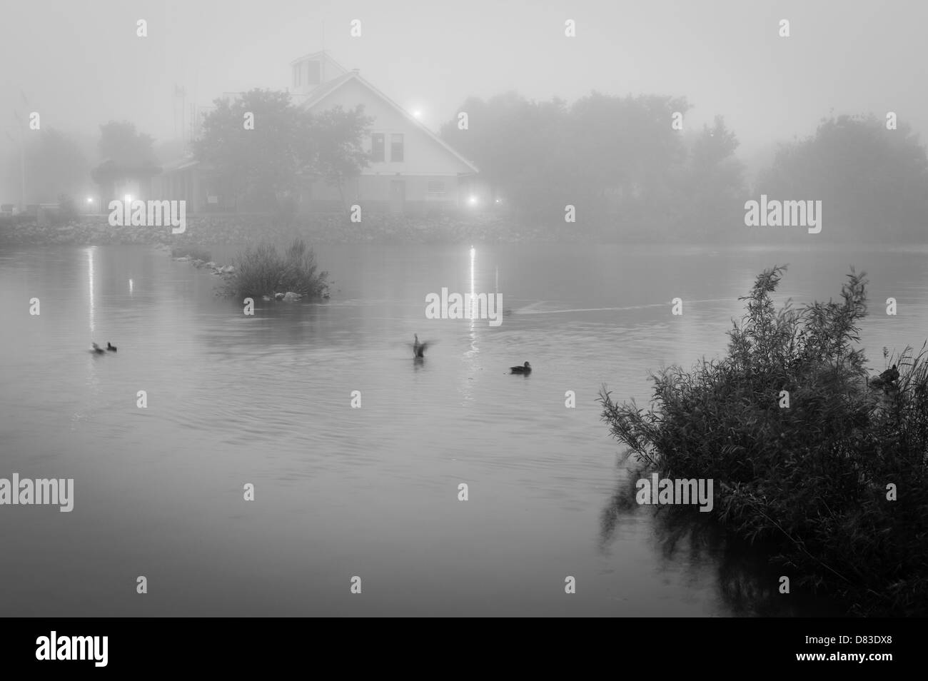 Heavy fog set over pond with few ducks and a lit building on its shore - Stock Image