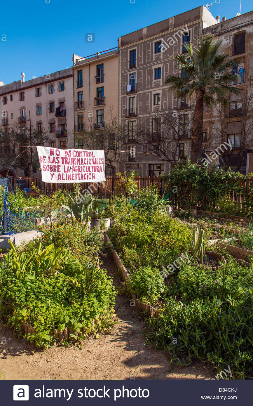 Sustainable urban vegetable garden located in Born district, Barcelona, Catalonia, Spain - Stock Image